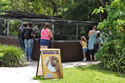 Everglades Family Tours